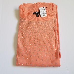 Express crystal embellished sweater